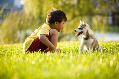 Niño asiático con un perro
