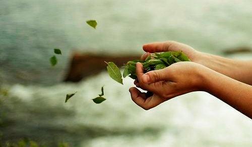 manos soltando hojas verdes pasado