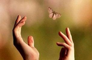 manos intentando alcanzar una mariposa