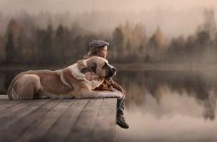 niño con su perro disfrutando de su infancia