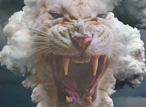 tigre blanco con la boca abierta representando la rabia del no puedo