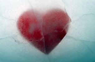 Amor congelado por evitar el dolor