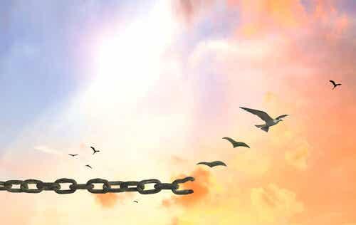 Poder o no poder: alas o límites