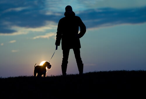 Hombre con su perro paseando al anochecer