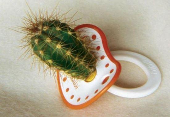 Chupete con forma de cactus