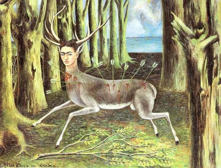 Frida como un ciervo herido