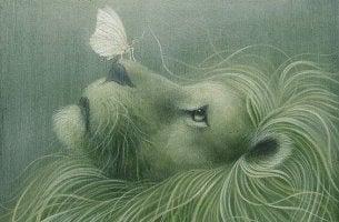 león con mariposa representando la conciencia