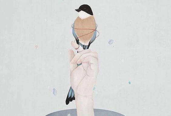 mano sujetando un pájaro