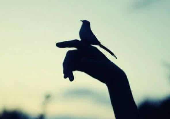 Haz algo bueno cada día, la bondad es más enriquecedora que el dinero