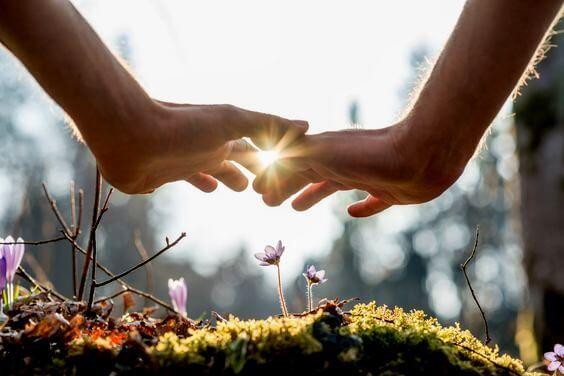 Manos extendidas sobre unas flores
