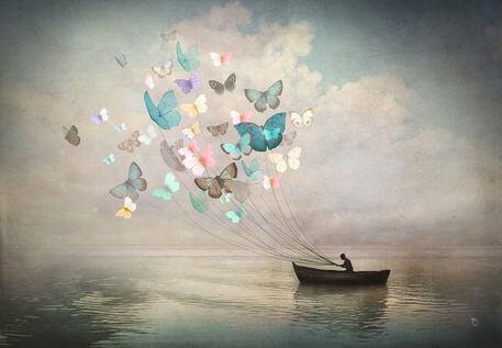 Mariposas guian el barco