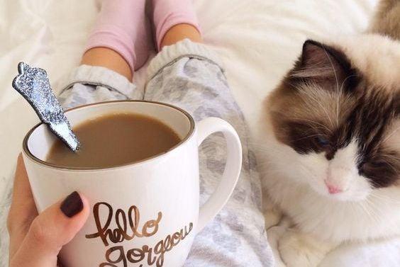 mujer tomando café con gato