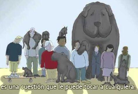 Personas con perro negro