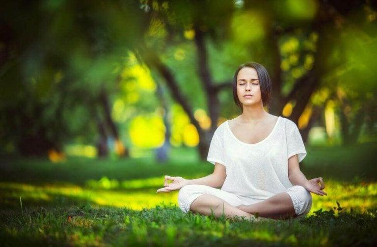 Meditar significa estar atento a todas las actividades de la mente