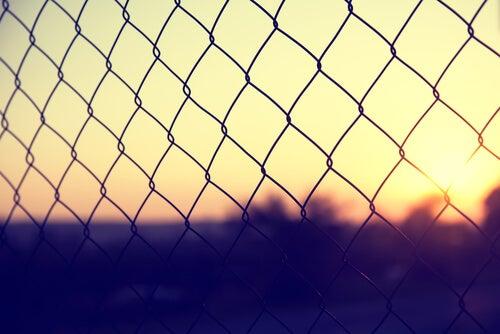 Redes de una prisión