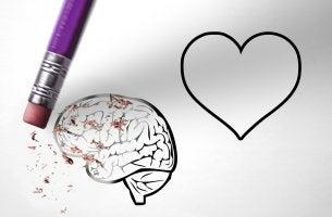 Emoción y razón