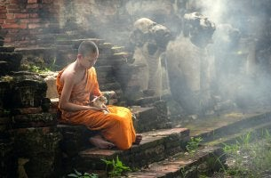 Monje budista con gatos