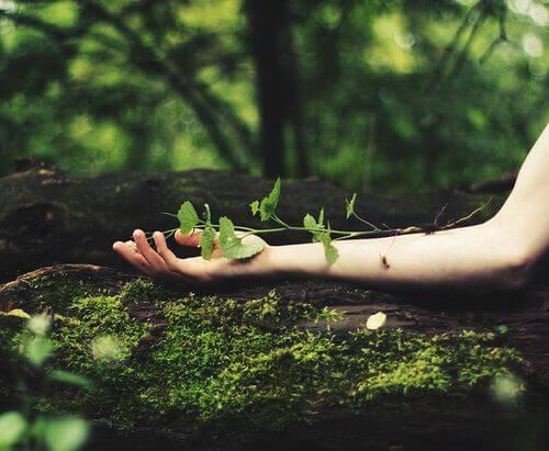 mano con hojas