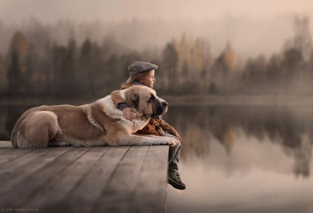 Niño disfrutando con su perro
