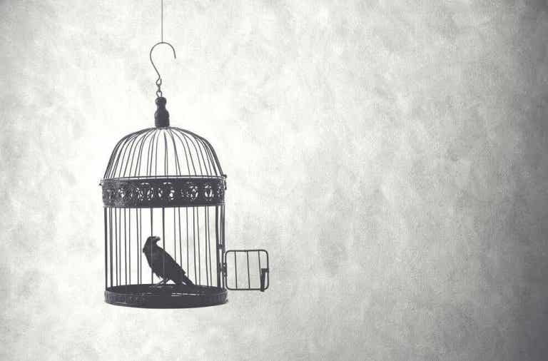 Un pájaro nacido en una jaula cree que volar es una enfermedad
