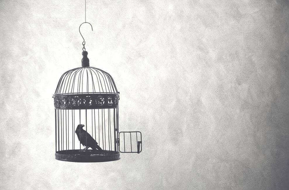 Pájaro en jaula simbolizando a Kingsley Hall