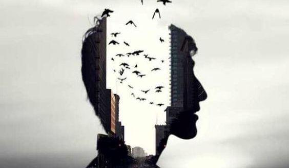 hombre con cabeza por donde escapan pájaros