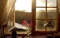 Adoro esos instantes a solas donde pensar en todo y nada