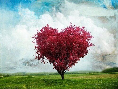Arbol con forma de corazón y de color rosa