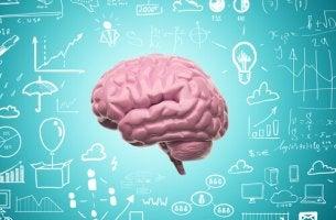 Cerebro con símbolos alrededor