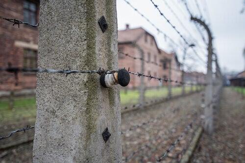 Campo de concentracion