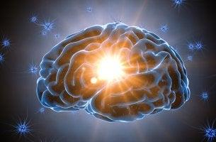 Reserva cognitiva