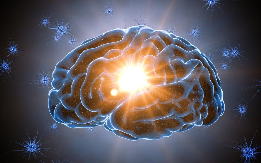 La reserva cognitiva protege nuestro cerebro