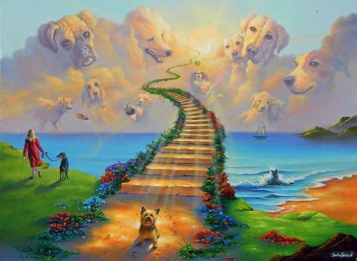 La leyenda del Puente del Arcoíris, el cielo de nuestras mascotas