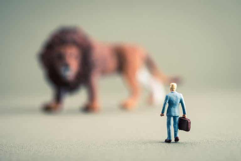 Cómo vencer el miedo irracional a los animales