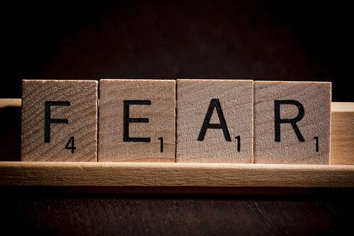 Palabra miedo
