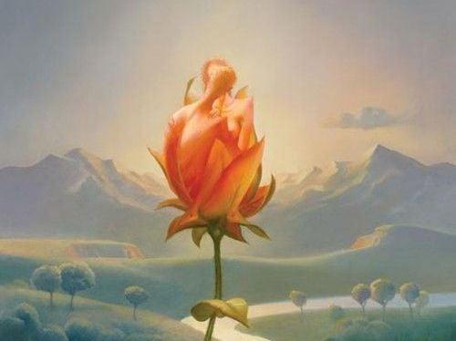 pareja en una rosa