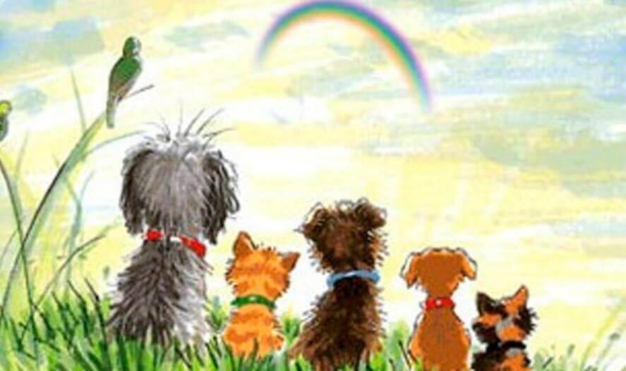 Resultado de imagen para perritos en el arco iris