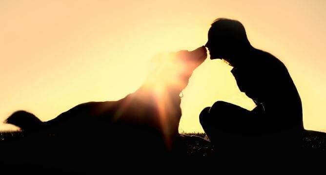 Persona con su perro desarrollando telepatía animal