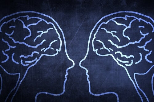 Neuronas espejo y empatía