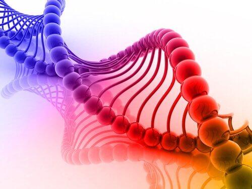 ADN de colores representando sinestesia