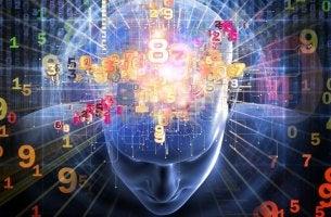 Cálculo mental cerebro