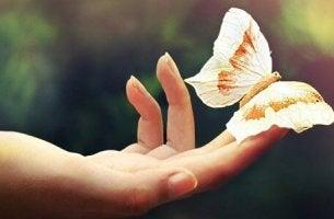 Mano con mariposa para olvidar hay que recordar