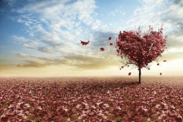 Corazón en forma de árbol con hojas