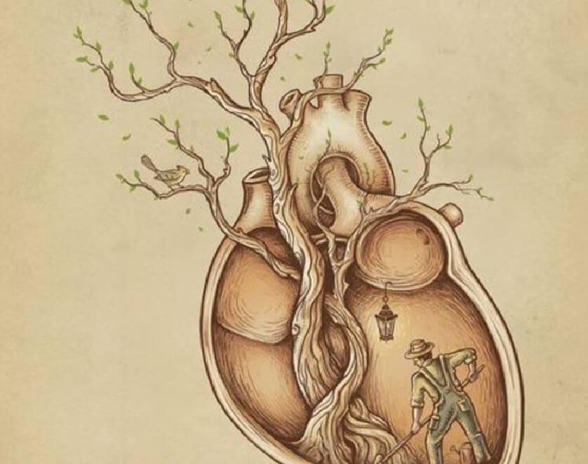 labrador-limpiando-un-corazón