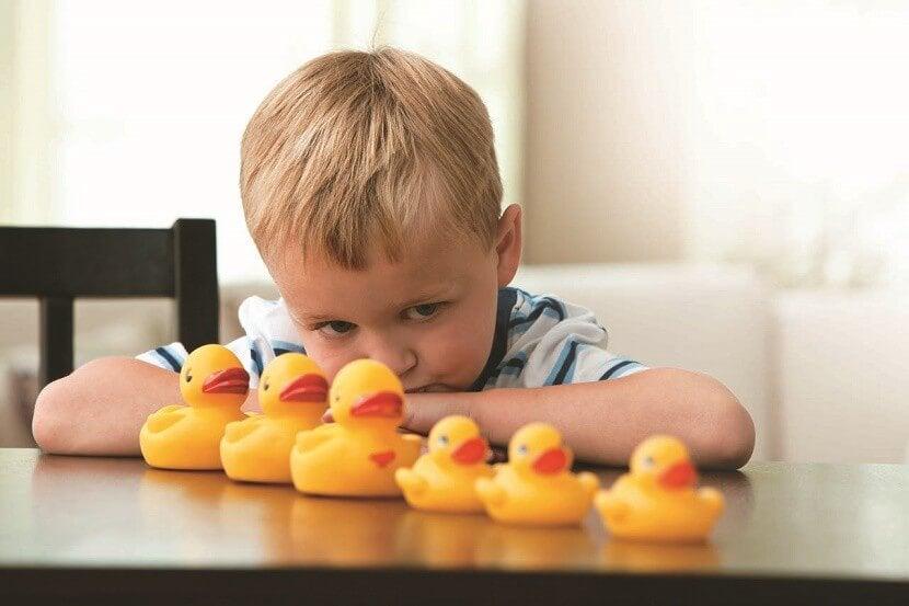 boy with ducks