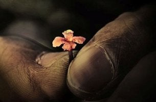 Manos con flor