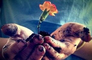manos con flores