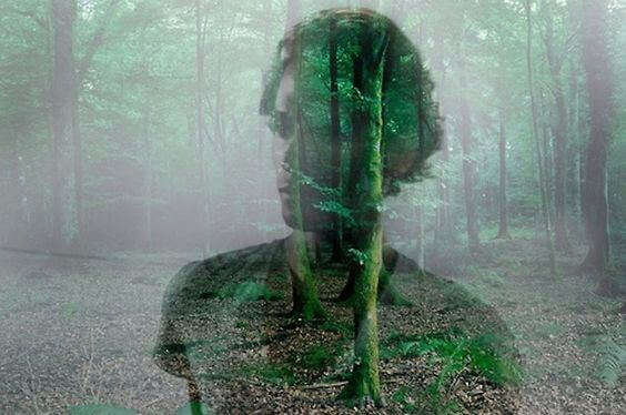 person superimposed over woods