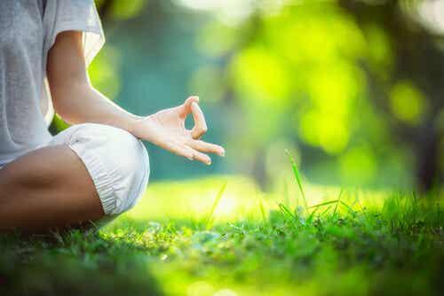 Mindfulness para nuestro día a día
