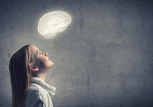 Cómo alimentar el desarrollo del cerebro del niño